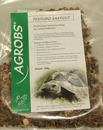 Agrobs Testudo Saatgut 100 gr. - 1