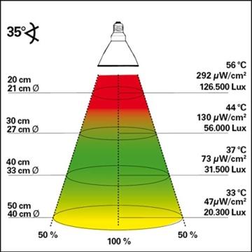 Lucky Reptile - Bright Sun UV Desert 70 W Komplettset, Metalldampflampe inklusive passende Fassung und Vorschaltgerät - 2