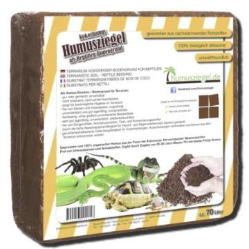 70 L Kokoseinstreu Bodengrund Terrarienerde für Reptilien - Kokoserde einfach portionierbar - MAXIBLOCK Terrarium Humusziegel Einstreu Cocoground Kokosgrund Kokoshumus Kokosziegel Kokosfaser Briketts Kokobricks -fein- - 2