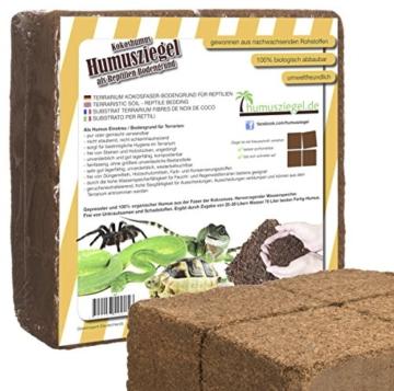 70 L Kokoseinstreu Bodengrund Terrarienerde für Reptilien - Kokoserde einfach portionierbar - MAXIBLOCK Terrarium Humusziegel Einstreu Cocoground Kokosgrund Kokoshumus Kokosziegel Kokosfaser Briketts Kokobricks -fein- - 1