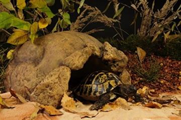 Exo Terra Landschildkröten Höhle - 2