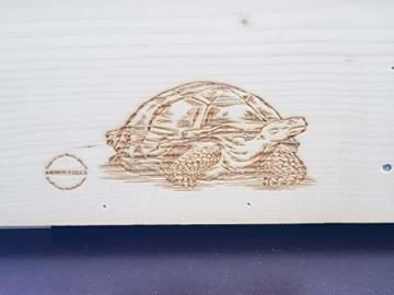 Qualität aus Niederbayern ARBRIKADREX Schildkröte Premium Schildkrötenhaus XXL (L:60cm; B.40cm; H:31cm) mit Sonnendach, Windfang, Einstellbarer Belüftung und Plexiglastor 18mm Vollholz Fichte - 8